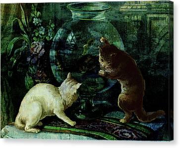 Curious Kittens Canvas Print by Sarah Vernon