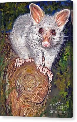 Curious Possum  Canvas Print