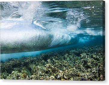 Curl Of Wave From Underwater Canvas Print