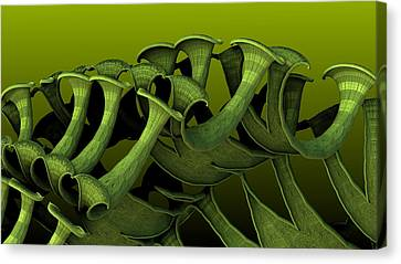 Curling Up Canvas Print by Hal Tenny