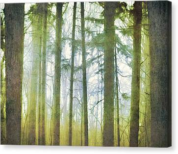 Curtain Of Morning Light Canvas Print