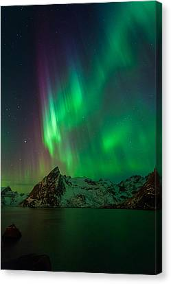 Curtains Of Light Canvas Print by Alex Conu