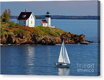 Curtis Island Lighthouse - D002652b Canvas Print