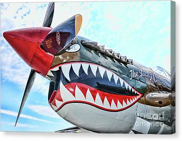 Curtiss P-40k The Warhawk  Canvas Print by Paul Ward
