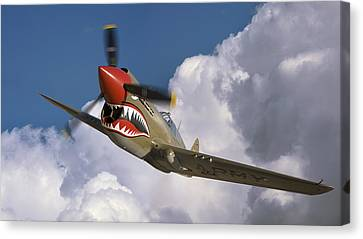 P-40 Canvas Print - Curtiss P-40n Warhawk by Larry McManus