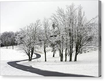 Mac Rae Field Curved Path Canvas Print