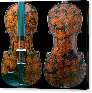 Custom Gliga Viola Canvas Print by Dino Muradian