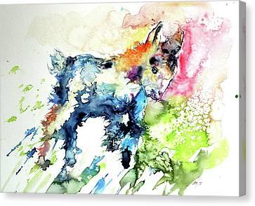 Cute Baby Goat Playing Canvas Print by Kovacs Anna Brigitta