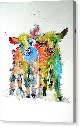 Cute Baby Goats Canvas Print by Kovacs Anna Brigitta