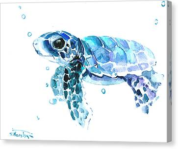 Cute Baby Turtle Canvas Print