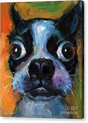 Cute Boston Terrier Puppy Art Canvas Print