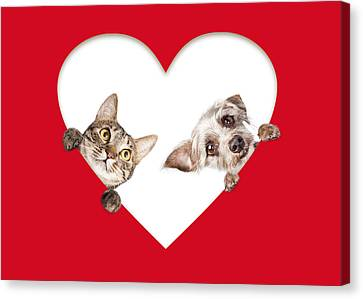 Cute Cat And Dog Peeking Out Of Cutout Heart Canvas Print by Susan Schmitz