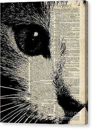 Cute Cat Illustration Over Old Dictionary Page Canvas Print by Jacob Kuch