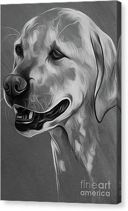 Chin On Hand Canvas Print - Cute Dog 03 by Gull G
