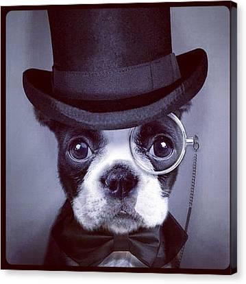 #cute #dog #blackandwhite  Canvas Print