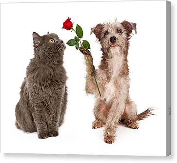 Cute Dog Giving Flower To A Cat Canvas Print by Susan Schmitz