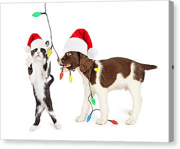 Cute Kitten And Puppy Playing With Christmas Lights Canvas Print by Susan Schmitz