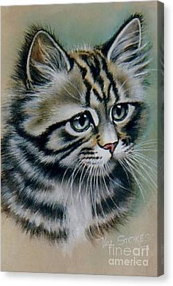 Cute Kitten Canvas Print by Val Stokes
