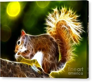 Cute Squirrel Canvas Print