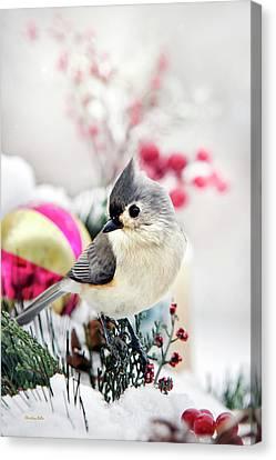 Cute Winter Bird - Tufted Titmouse Canvas Print by Christina Rollo