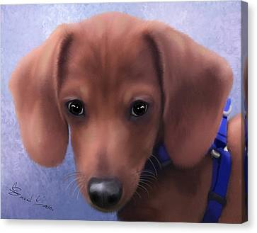 Cuteness Overload Canvas Print by Sannel Larson