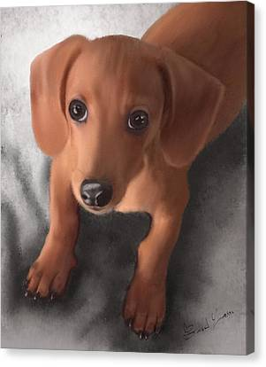 Cutest Pup Ever Canvas Print by Sannel Larson