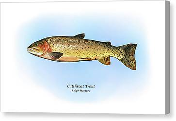 Cutthroat Trout Canvas Print by Ralph Martens