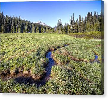 Sunriver Canvas Print - Cutting Through The Meadow by Twenty Two North Photography