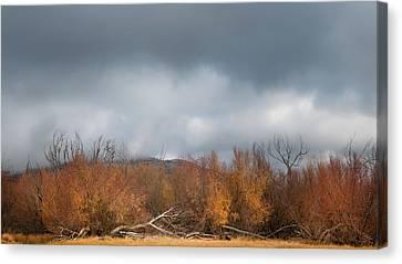 Cuyamaca Autumn Canvas Print by Joseph Smith