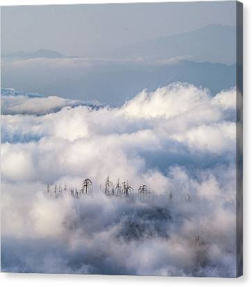 Canvas Print featuring the photograph Cuyamaca Island by Alexander Kunz