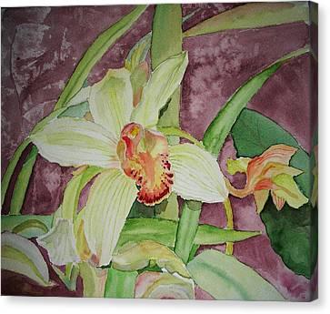 Cymbidium Canvas Print by Peggy Bergey