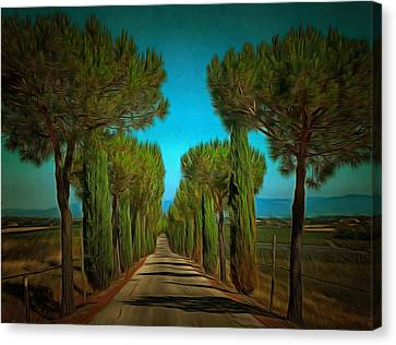 Cypress Avenue Canvas Print by Dorothy Berry-Lound