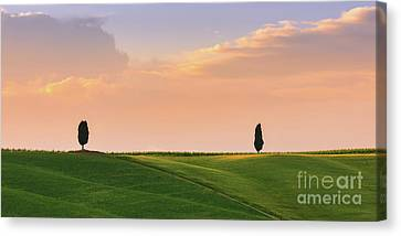 Cypress Trees At Sunset Canvas Print by Henk Meijer Photography