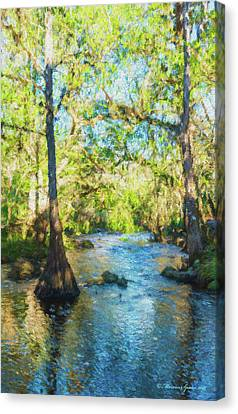 Cypress Trees On The River Canvas Print by Marvin Spates