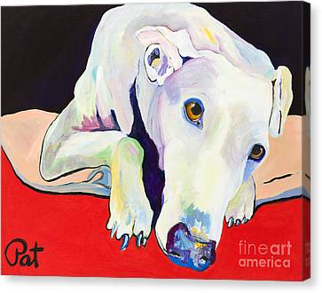 Rescued Greyhound Canvas Print - Cyrus by Pat Saunders-White
