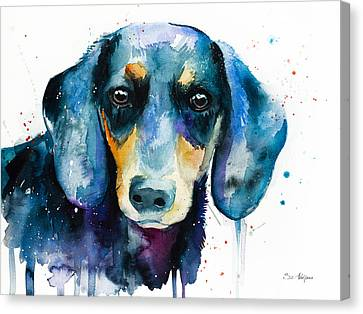 Dachshund Art Canvas Print - Dachshund  2 by Slavi Aladjova