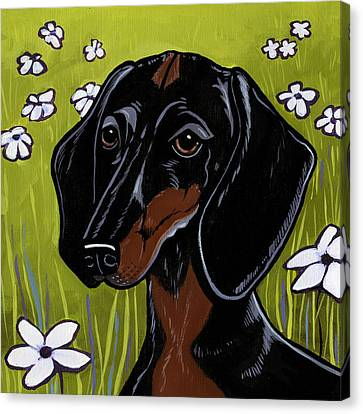 Dachshund Canvas Print by Leanne Wilkes