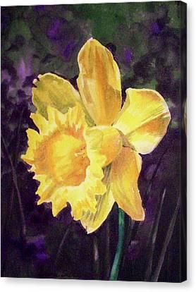 Daffodils Canvas Print - Daffodil by Irina Sztukowski