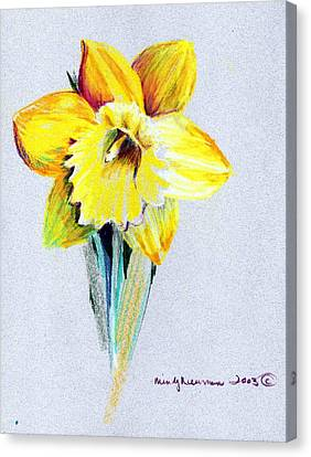 Daffodil Canvas Print by Mindy Newman