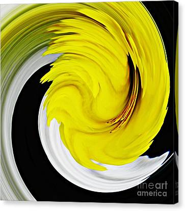 Daffodil Twist Canvas Print