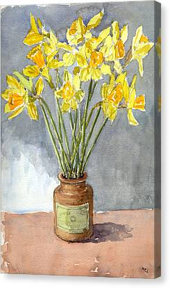 Daffodils In A Pot. Canvas Print by Mike Lester