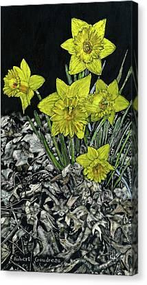 Daffodils Canvas Print by Robert Goudreau