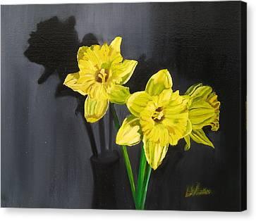 Daffodil's Yellows Canvas Print