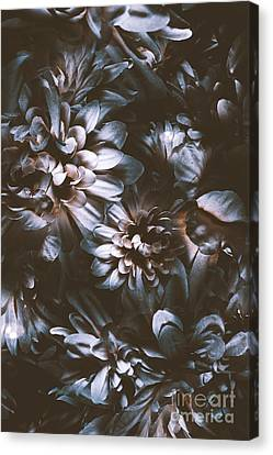 Dahlia Abstraction Canvas Print by Jorgo Photography - Wall Art Gallery