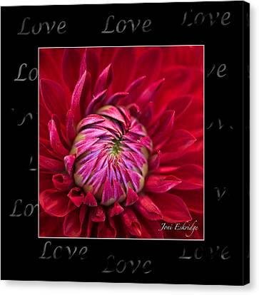 Dahlia Of Love Canvas Print