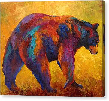 Daily Rounds - Black Bear Canvas Print by Marion Rose