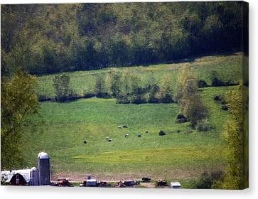 Dairy Farm In The Finger Lakes Canvas Print by David Lane
