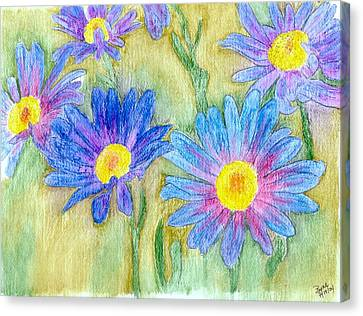 Daisey Field Canvas Print by Margie  Byrne