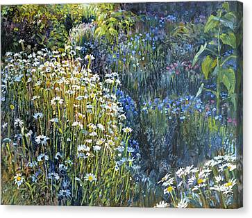 Daisies And Shades Of Blue Canvas Print by Steve Spencer