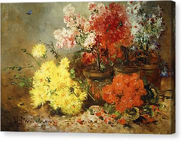 Daisies, Begonia, And Other Flowers In Pots Canvas Print